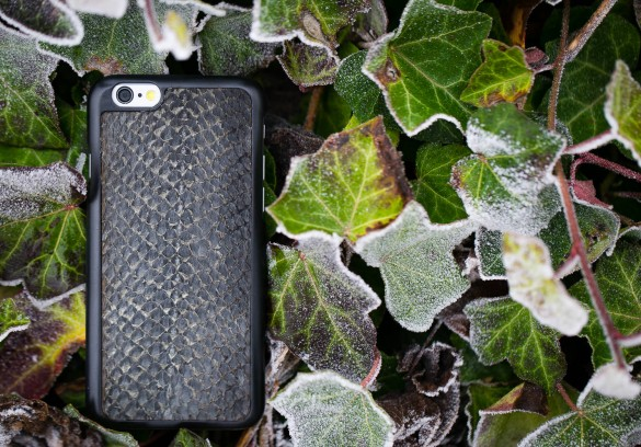 iPhone 6 case zalmleer